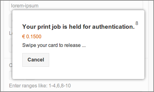 User Web App: Printer - Direct Print Release